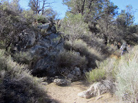 Black Rock Spring, Joshua Tree National Park