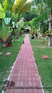 chalet zinc roofs garden