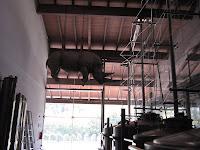 un rinoceronte fra i silos