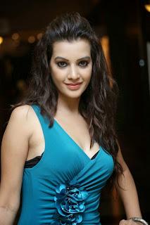 Diksha Panth New  Spicy Picture Shoot Stills003.jpg