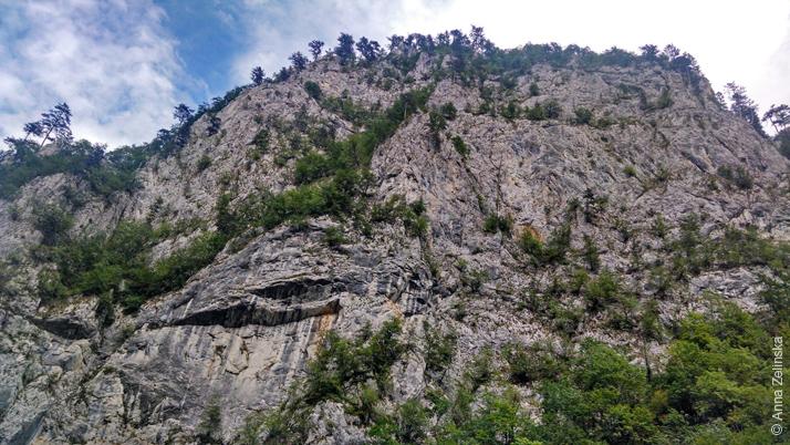 Черные горы Черногории