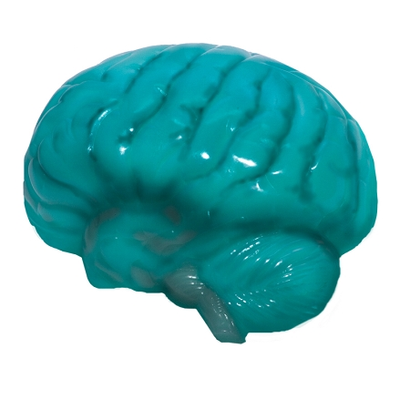 Brain Jello Molds4