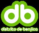 Distrito de Benfica