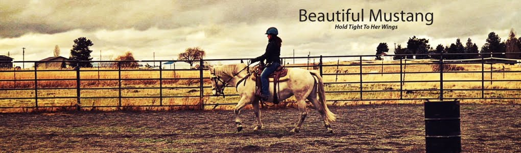 Beautiful Mustang