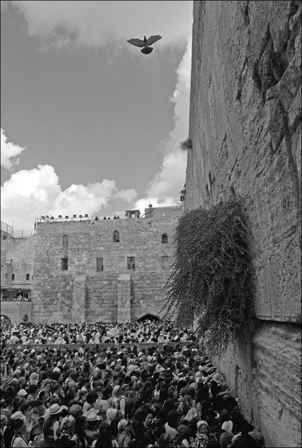 Израиль и диаспора 2014-2015. С любовью, тревогой и надеждой. Круглый стол