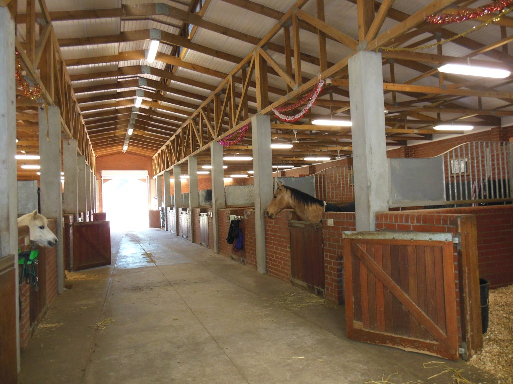 horse stables designs the design allows for safe