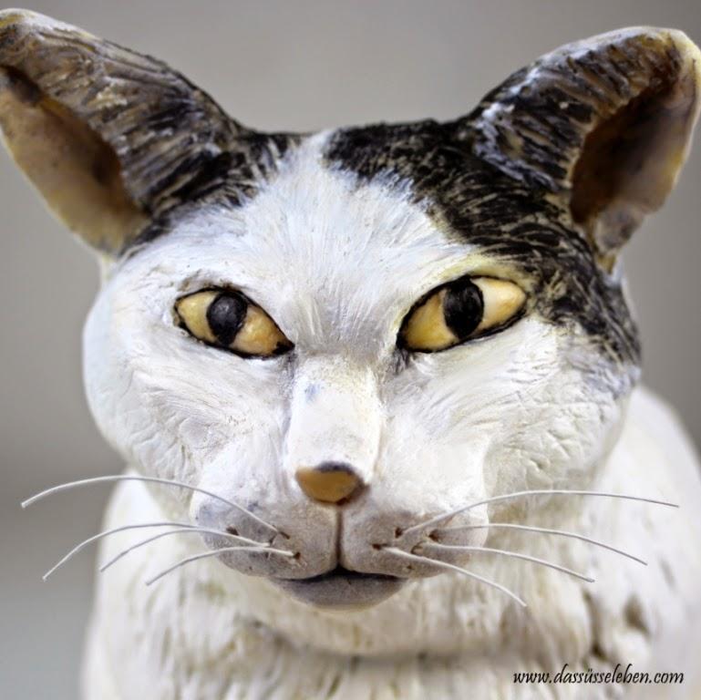 Charmant Katze 5 Draht Verwendet Galerie - Elektrische Schaltplan ...