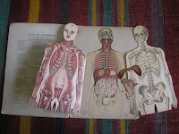 Anatomy Book, Feltbug@flickr