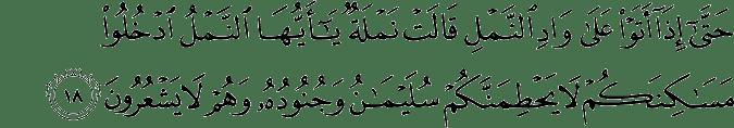 Surat An Naml ayat 18