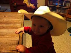 baby Bronco