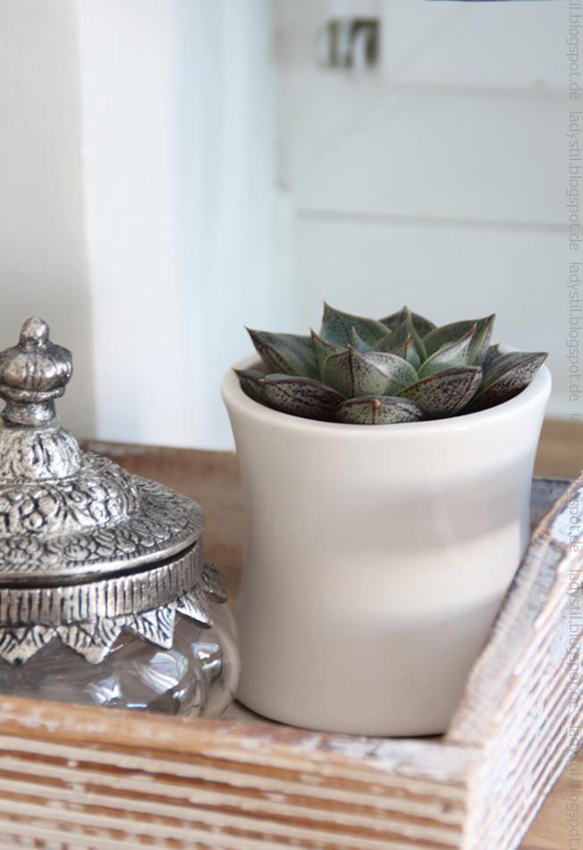 sukkulente-in-weißem-übertopf-daneben-ein-marokkanisches-gefäß