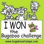 Bugaboo Challenge