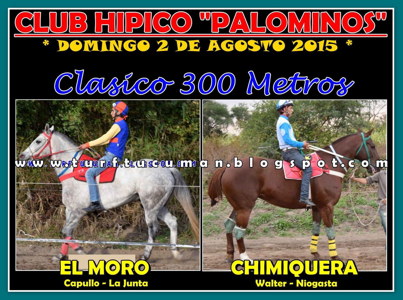 MORO CHIMIQUERA