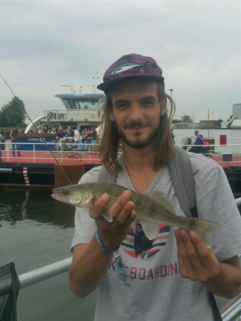 vissen zitten achter elkaar aan