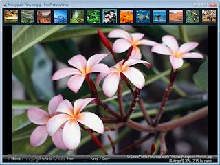 تنزيل برنامج FastPictureViewer لمشاهدة الصور