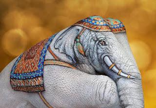 Diseños Animales Pintura