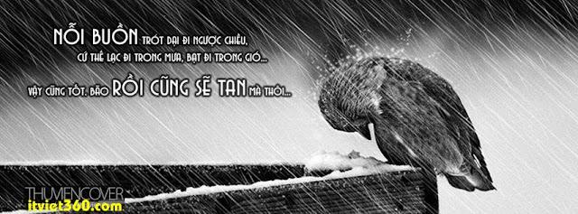 Ảnh bìa cho Facebook mưa | Cover FB timeline rain, nỗi buồn chót dại đi ngược chiều