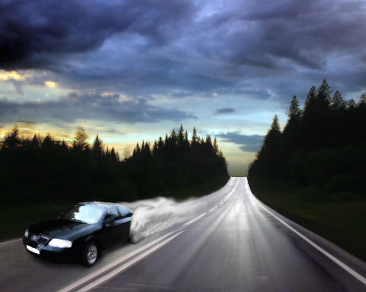 Ночное шоссе с рассыпающейся разметкой ведет в никуда.  Сбитый машиной лисенок не вызывает жалости.
