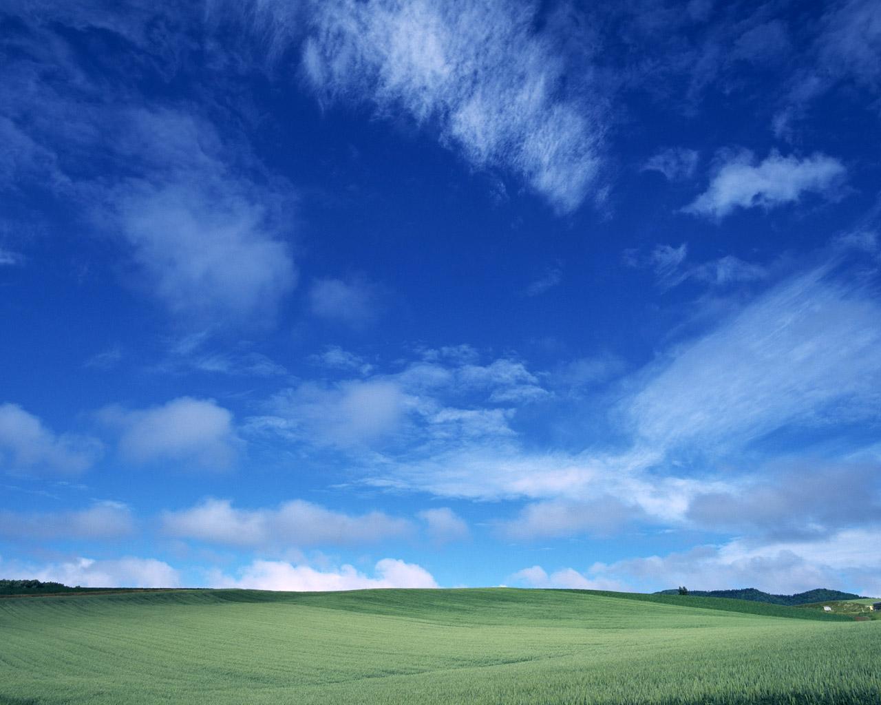 http://3.bp.blogspot.com/-jASK4Hmz64Y/USD5Vf-zWXI/AAAAAAAAAT0/Wm1Tw0akV08/s1600/5607-blue-and-white-wallpaper.jpg