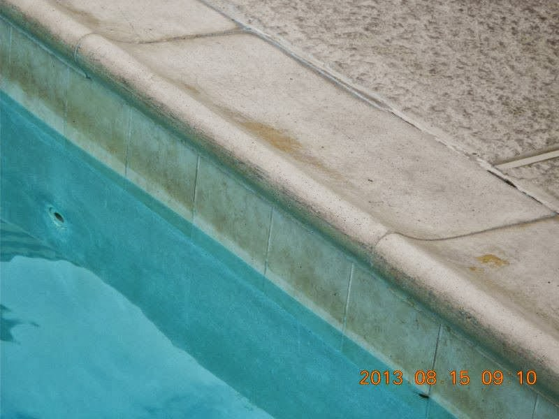 Swimming Pool Abuse : Be careful of the dirty contaminated swimming pool at