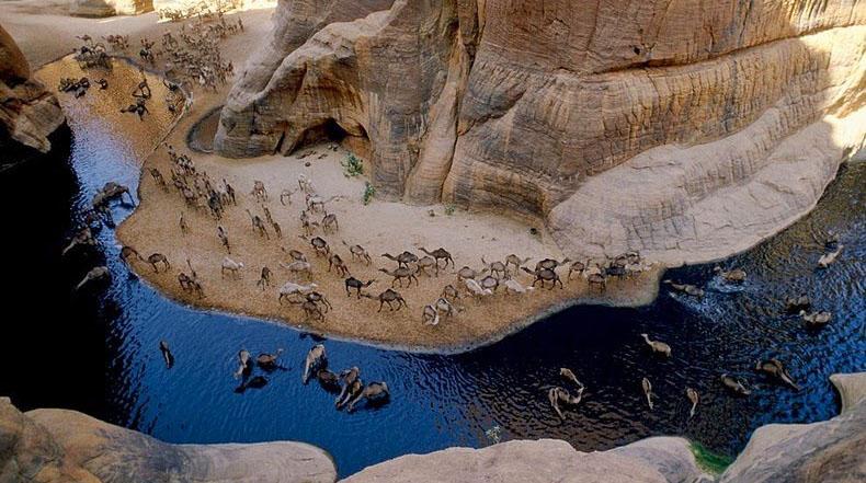 La guelta d'Archei, un oasis en medio del desierto del Sahara