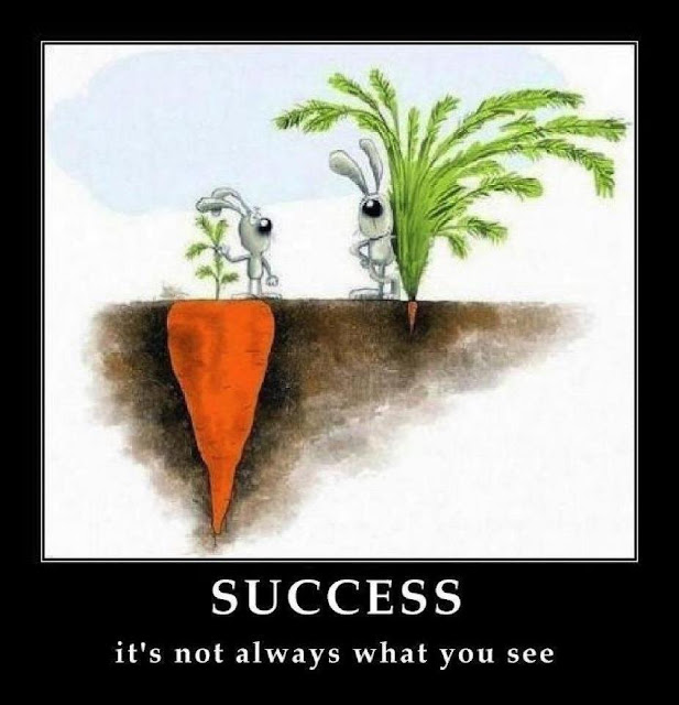 Success it`s not always what you see