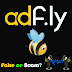 Why cant i open adfly site? Is adfly fake or a scam website? How can i access ADFLY?