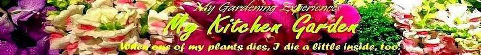 My Kitchen Garden
