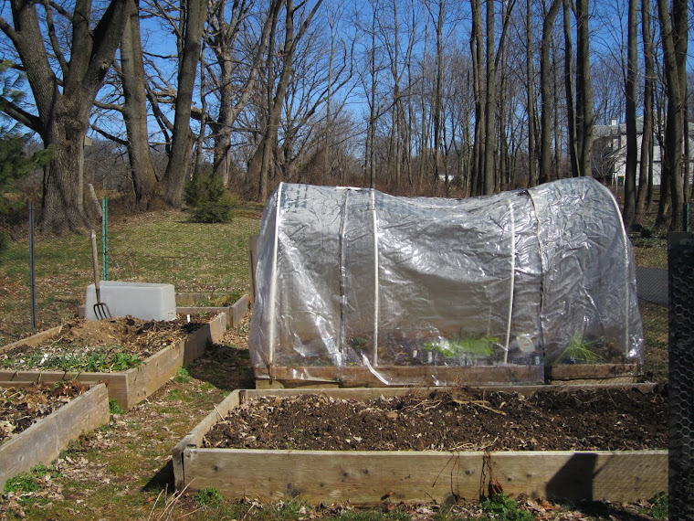 FEBRUARY 6 - HOOPHOUSE AND STORAGE BOX