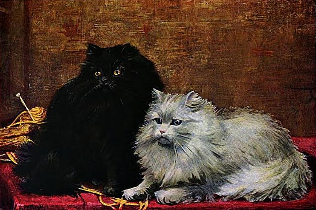 Black and White Persian cats, after a painting by William Luker (1862-1934)