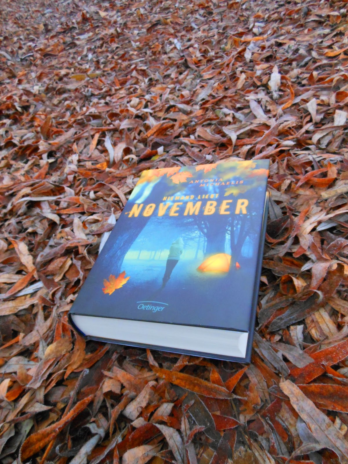 Michaelis, Antonia: Niemand liebt November