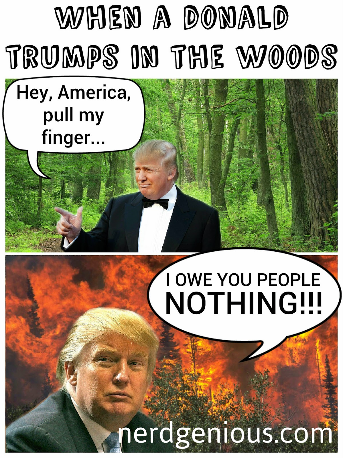 Donald Trump farts in the woods comic strip meme