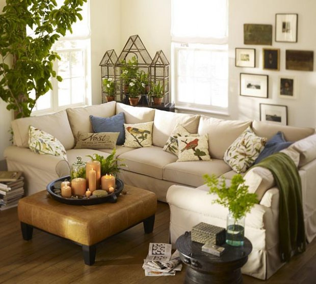 Decorando y renovando casas con plantas for Decoracion de casas con plantas de interior