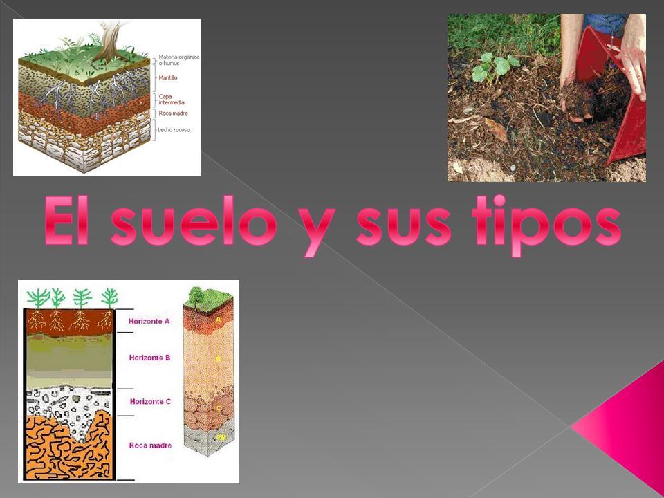 El suelo y sus tipos 3 presentaci n power point for Que elementos conforman el suelo