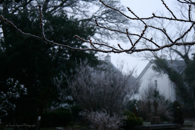 frosty Oughterard