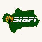 SIBFI