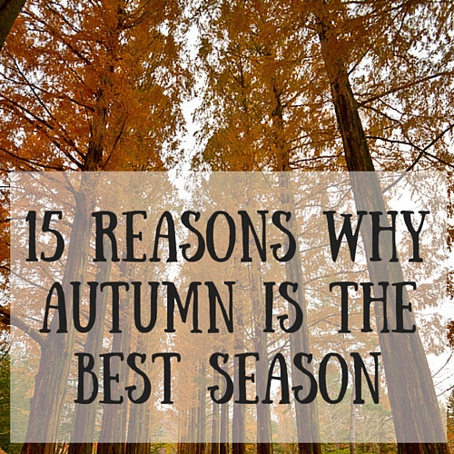 15 Reasons Why Autumn Is The Best Season All That B
