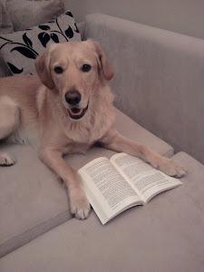 Okuduklarımız