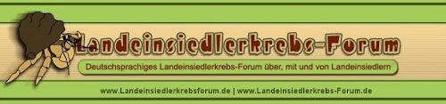 Das Landeinsiedlerkrebs-Forum.de