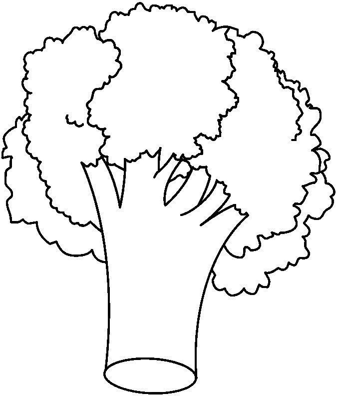 bauzinho da web baÚ da web desenho risco de brócolis para pintar