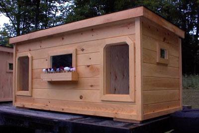 Dog's House Design Photo
