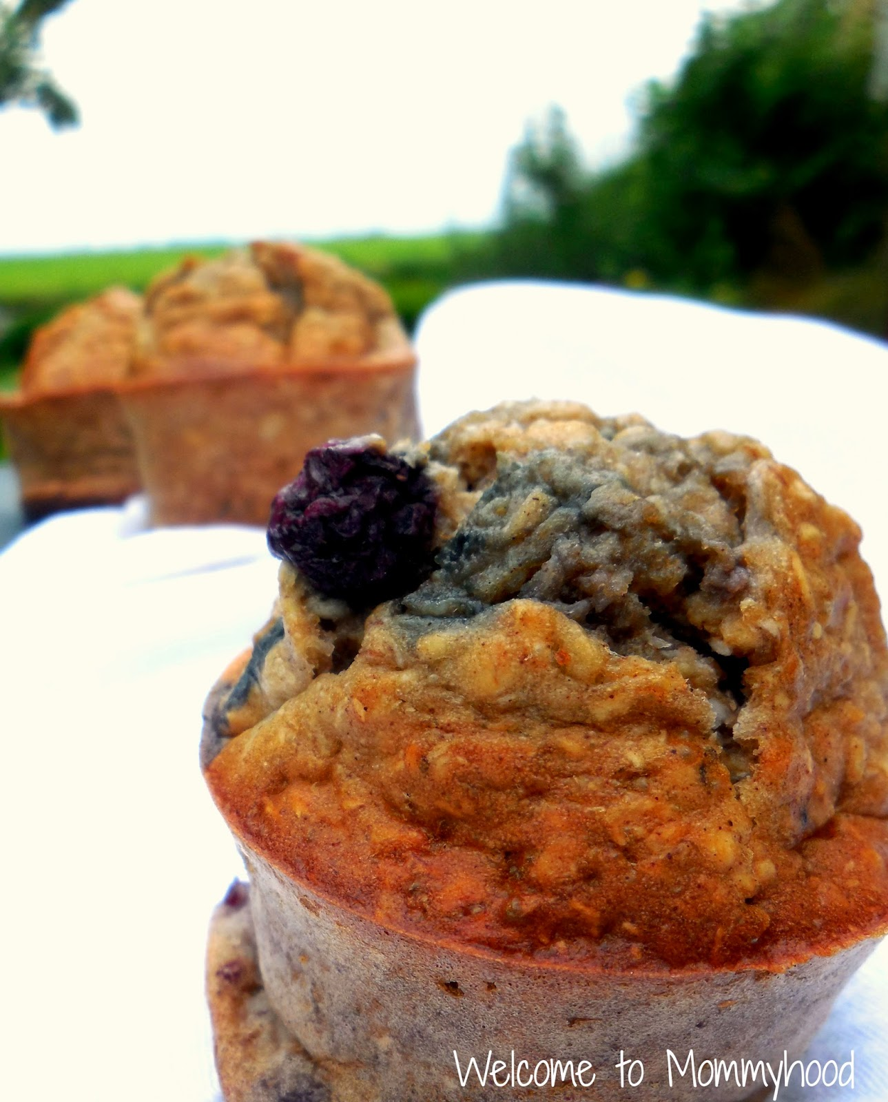 Healthy muffins recipes: blueberry banana breakfast muffins by Welcome to Mommyhood