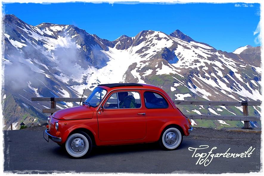 Immer wieder mal Fiat 500...