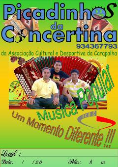 Grupo de Concertinas PICADINHOS DA CONCERTINA