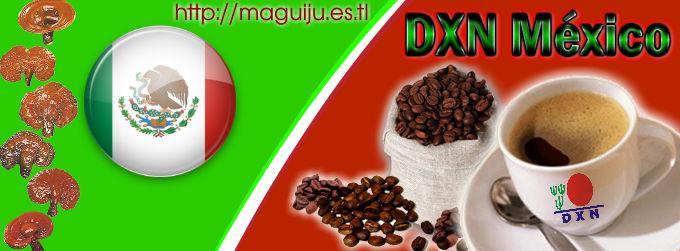DXN EN MEXICO