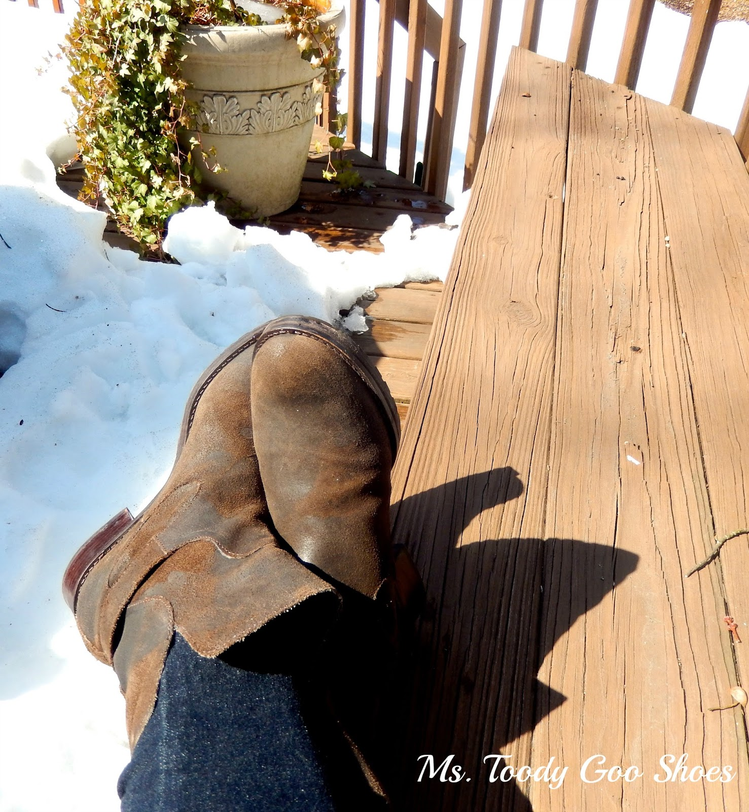 My March Photo Diary  --- Ms. Toody Goo Shoes