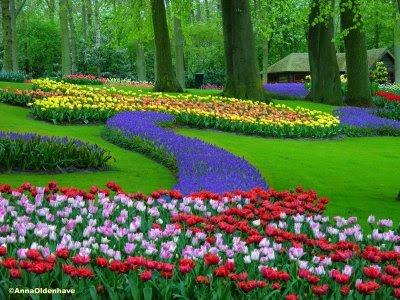 Los jardines mas bellos taringa for Jardin keukenhof