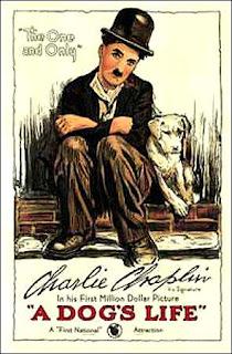 Blog Safari Club, película online, Vida de perro, Charles Chaplin (1918)