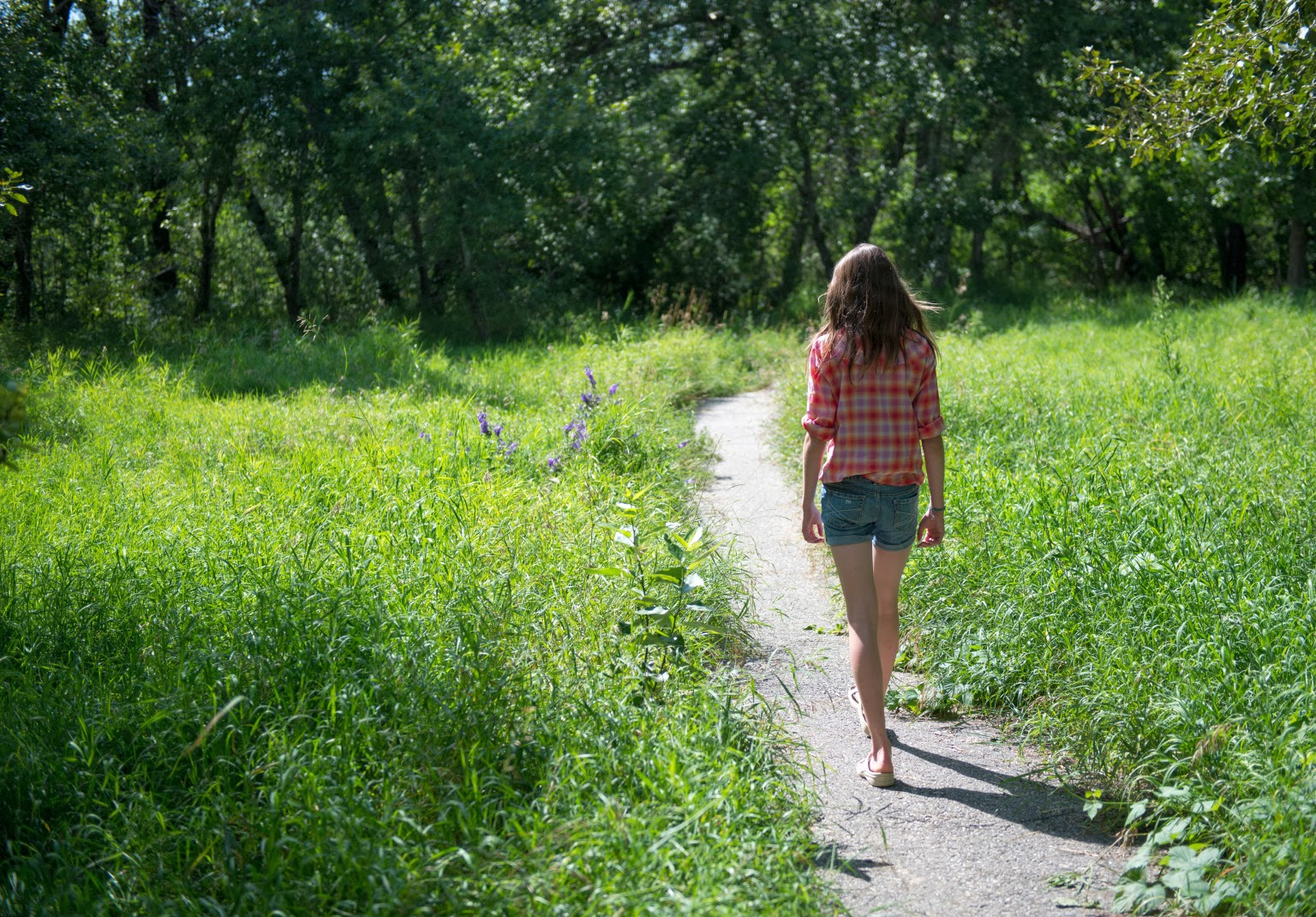 Walking Into Well-Being: The Power of The Gratitude Walk