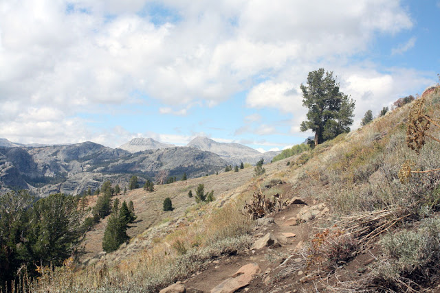 high trail pacific crest trail